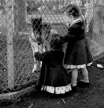 Eileen (Johnston) Dickinson with her older sister Peggy visit the Zoo in 1955